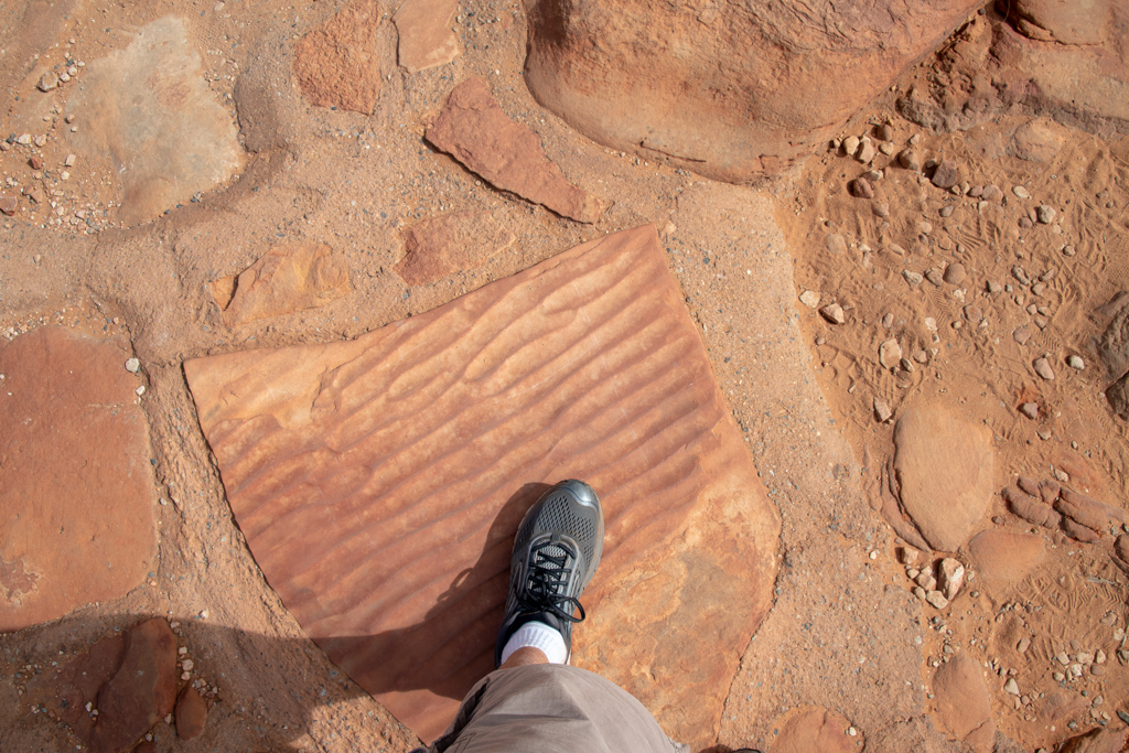 Walking on an ancient seabed