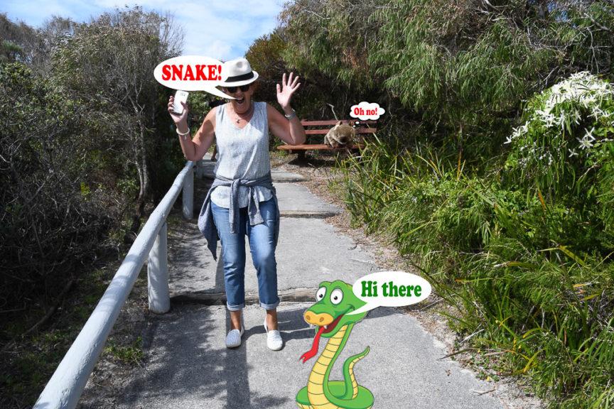 Merrisa spooks snake