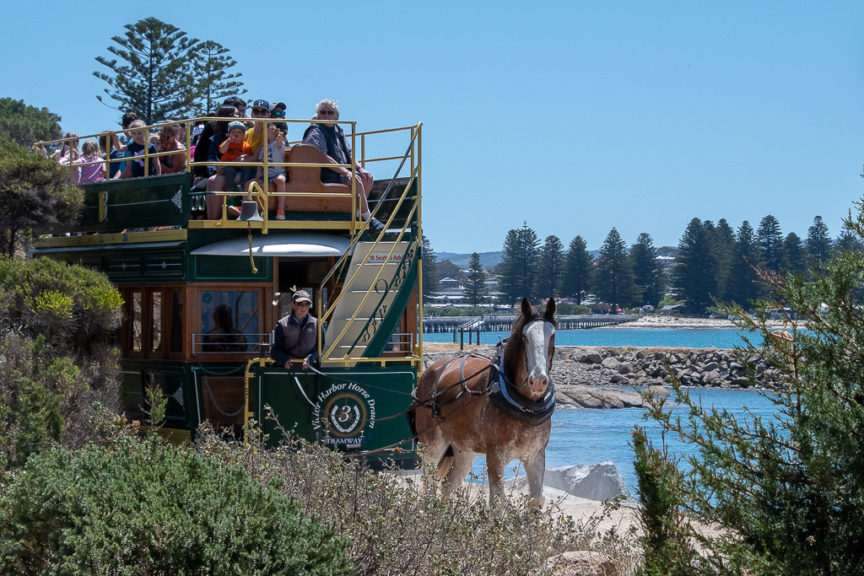 Victor Harbour horse drawn tram