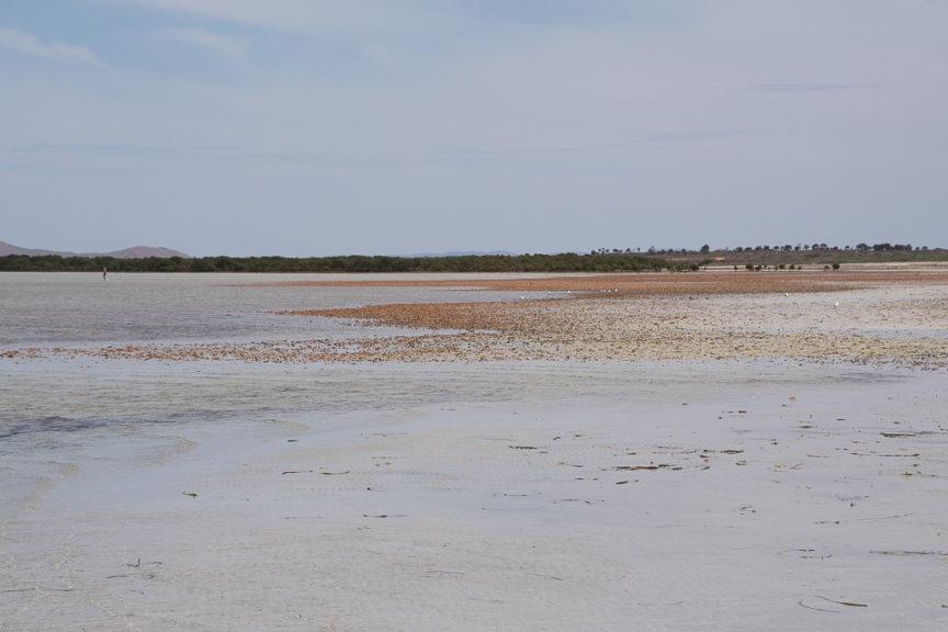 Whyalla Beach